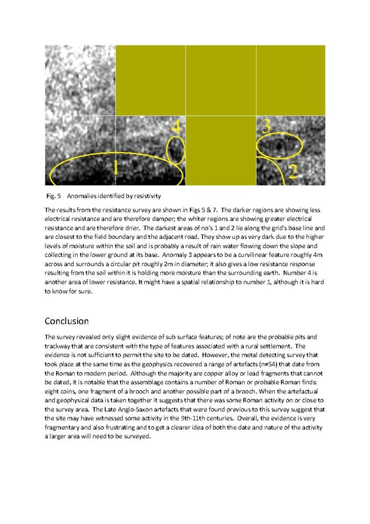 East_Meon_survey_report_Page_5
