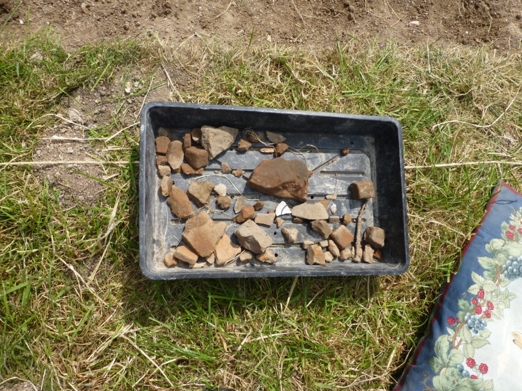 An example of our finds tray showing pottery and tiles from the Roman period